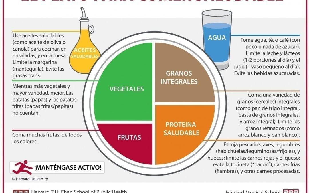 El Plato para Comer Saludable