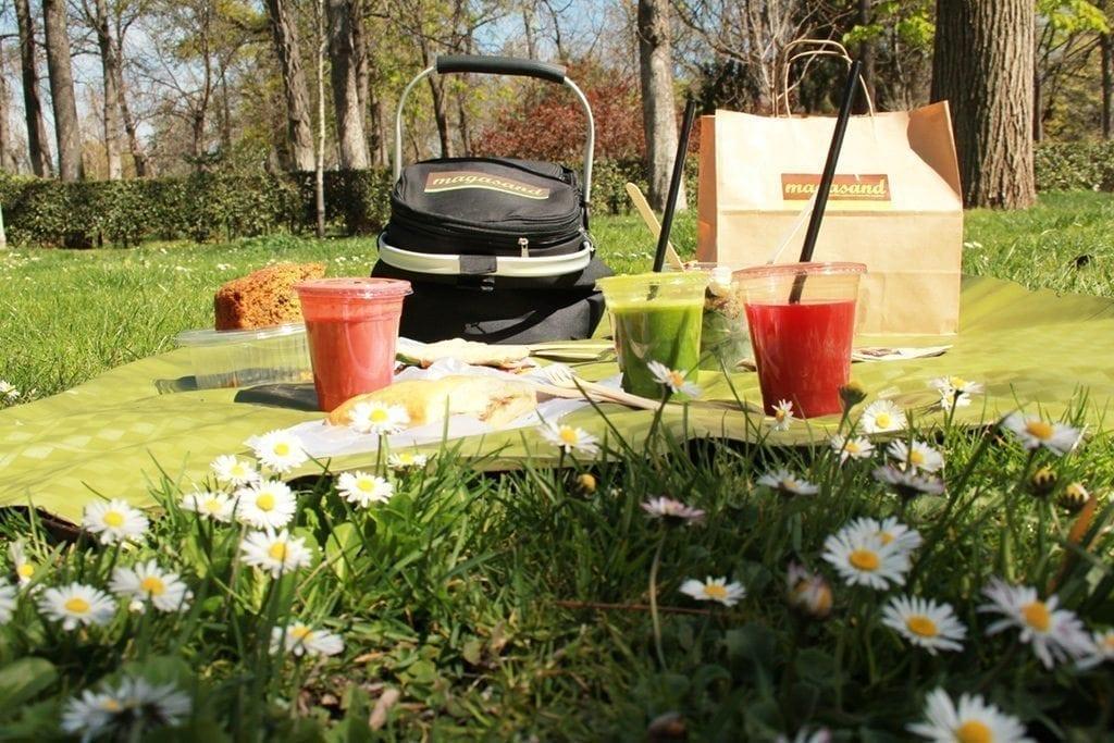 picnic Magasand