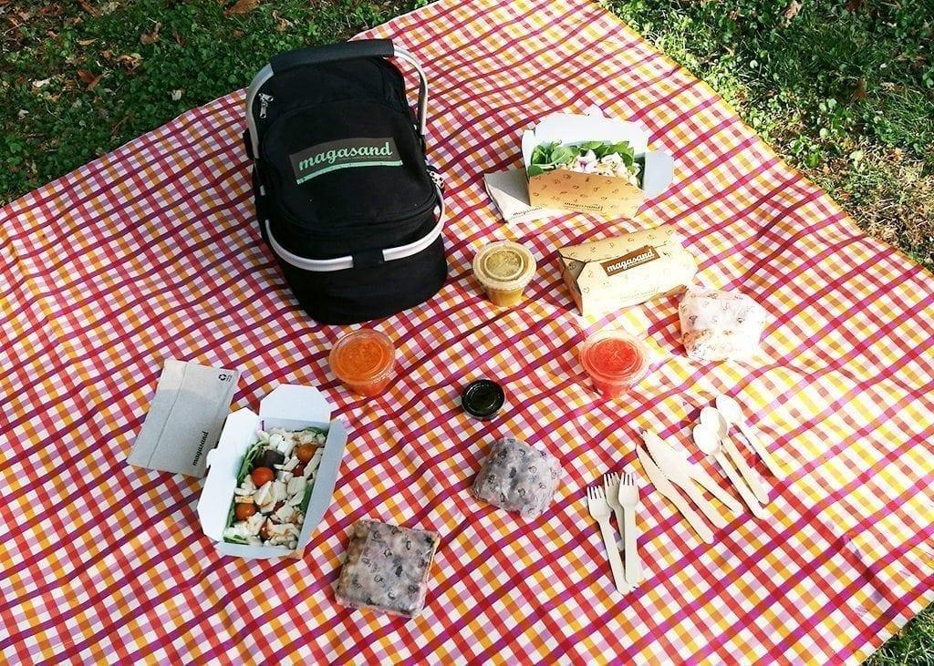 De picnic con Magasand